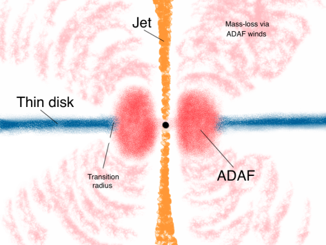 A cartoon version of the most favored scenario for the black hole accretion flow geometry and outflows in low-luminosity AGNs (Nemmen et al. 2014, MNRAS)